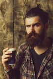 Man holding blue plastic cup. Man or bearded caucasian hipster with grey hair, long beard and moustache holding blue plastic cup on wooden background. Coffee to royalty free stock images