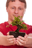 Man is holding a bonsai tree in his hands Royalty Free Stock Images