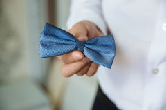 Man holding bow tie. Elegant gentleman clother. Stock Images