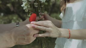 Man holding box with ring proposing to his girlfriend. Closeup male hands giving bouquet of fresh chamomiles to his girlfriend and holding red velvet box stock footage