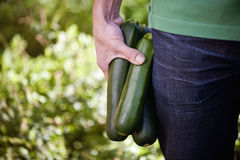 A man holding courgettes Royalty Free Stock Photography