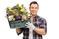 Man holding a crate of flowers Stock Images
