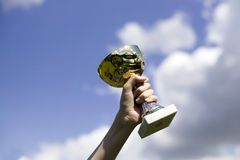 Man holding cup of winning Stock Image