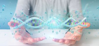 Man holding a 3d rendering data coded Dna with binary file aroun. View of a Man holding a 3d rendering data coded Dna with binary file around Stock Photo