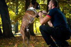 Man Holding Dog Stock Images