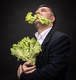Man holding and eating lettuce. Healthy food. Man holding and eating lettuce royalty free stock image