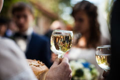 Man holding elegant glass of champagne in a restaurant celebrati Royalty Free Stock Photo