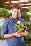 Man holding gerbera flower in garden center. Smiling man holding pot with gerbera flower in a garden center stock images
