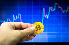 Man holding gold bitcoin and BTC trading chart in background, Financial concept. Man holding gold bitcoin and BTC trading chart in background, Financial concept Stock Image