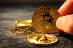 Man holding Golden Bitcoin over black background. Business concept. Stock Images