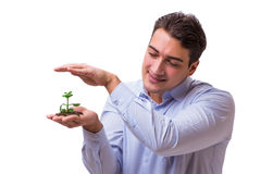 The man holding green seedling isolated on white Royalty Free Stock Photo
