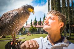 Man holding on a hand of beautiful eagle Stock Photo