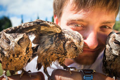 Man holding on a hand of beautiful owls Stock Photography