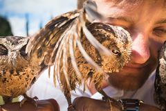Man holding on a hand of beautiful owls Stock Images