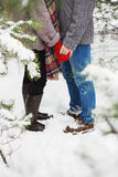 Man holding the hand of girlfriend in forest Stock Photography