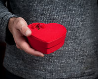 Man holding  heart box Stock Images