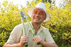 Man holding hedge shears royalty free stock photo