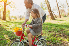 Man holding his granddaughter`s bike. Old men in white shirt holding his granddaughter`s bike while she is learning to ride it Royalty Free Stock Photography