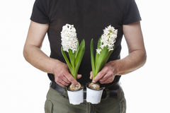 Man holding hyacinth flowers Stock Photos