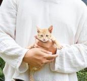 man holding kitten. Stock Photo