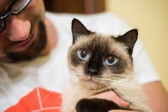 Man holding a kitten Stock Photo