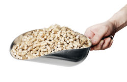 Wood Pellets. Man holding a metallic scoop full of wood pellets. Wood pellets made from industrial wood waste and are used for fuel Royalty Free Stock Photo