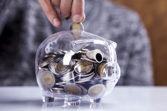Man holding piggy bank! Stock Photos