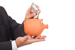 Man holding a piggy bank and dollars Stock Image