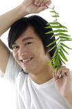 Man holding plant leaf Royalty Free Stock Photos