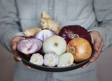 Man holding a plate with onion and garlic Autumn harvest and healthy organic food concept royalty free stock photography