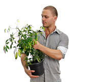 Man holding a pot with plant. Stock Photography