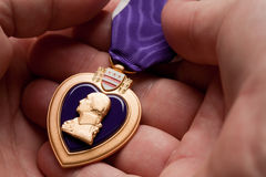 Man Holding Purple Heart War Medal Stock Image