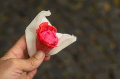A man holding a rasberry ice cream cone in a napkin on the street. Ice cream cone is partially eaten. Summer frozen cold food dessert hand snack flavor natural royalty free stock photo