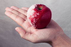 Man holding red apple Stock Photography