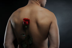 Man holding a red rose Stock Image