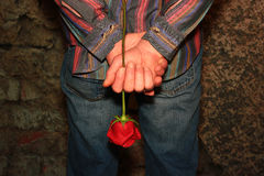 Man Holding a Red Rose. Behind his back Royalty Free Stock Images