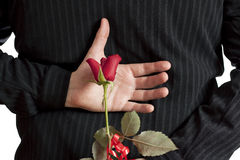 Man Holding Red Rose Behind His Back Royalty Free Stock Images