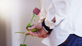 Man Holding a Red Rose in His Hand. Close-up. Shot on RED Epic Royalty Free Stock Photo