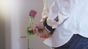A Man Holding a Red Rose in His Hand,Close-up. Shot on RED Epic stock video