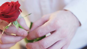 Man Holding a Red Rose in His Hands stock video