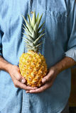 Man Holding Ripe Pineapple Stock Photos