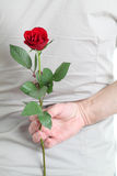 Man holding rose Royalty Free Stock Photos