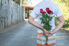 Holding a rose, surprise on Valentine`s Day stock photos