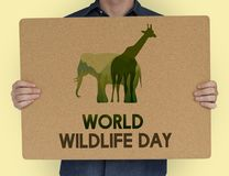 Man holding a sign with World Wildlife Day Stock Photography