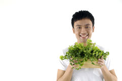 Man holding small potted plant Stock Photography