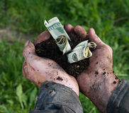 Man holding soil with dollars Royalty Free Stock Photography