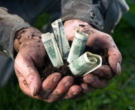 Man holding soil with dollars Stock Image