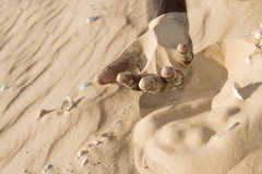 Man holding some sand in the hand Royalty Free Stock Photo