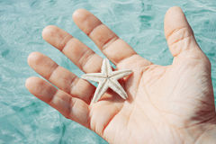Man holding starfish Stock Photo