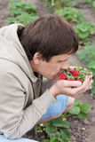 Man holding a strawberry and sniffs it Royalty Free Stock Images
